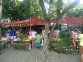 Nutrition Month 2014 (6)