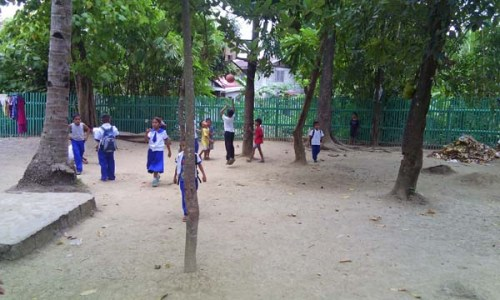 School's Back Yard (1)